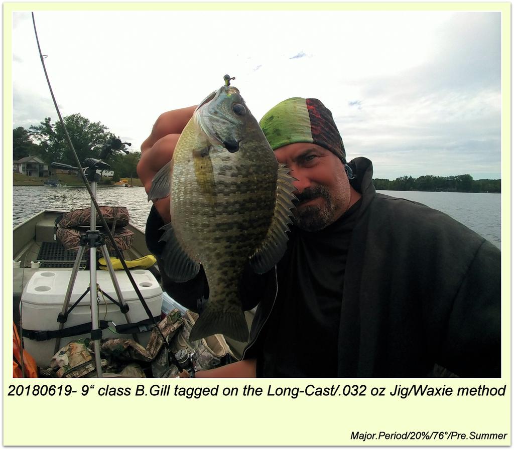"20180619- 9"" class B.Gill tagged on the Long-Cast/.032 oz Jig/Waxie method"