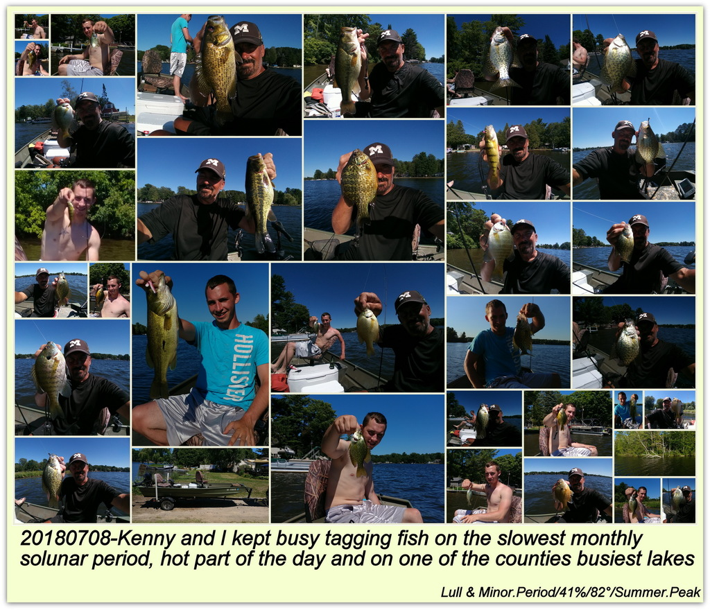 20180708-Kenny and I kept busy tagging fish