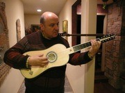 New Barber/Harris Baroque Guitar