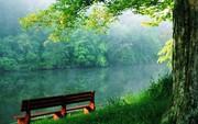 Nature-Beauty-Free-HD-Wallpaper