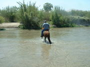 Leaving the river