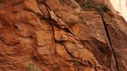 More Rock Refs