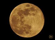 red full moon