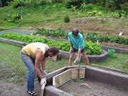 Building Organiponico raised beds