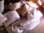 seed & grain stocks