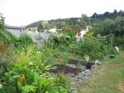 Composted beds1:08