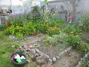Part of the Vege Garden 30/9/07