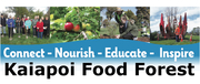 Kaiapoi Food Forest header for youtube