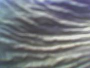 Textura de Arcilla y Piel