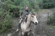 adan de a caballo.