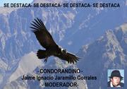 crucificada destac Condor andino