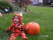 """my son posing in his """"tigger outfit for Halloween"""