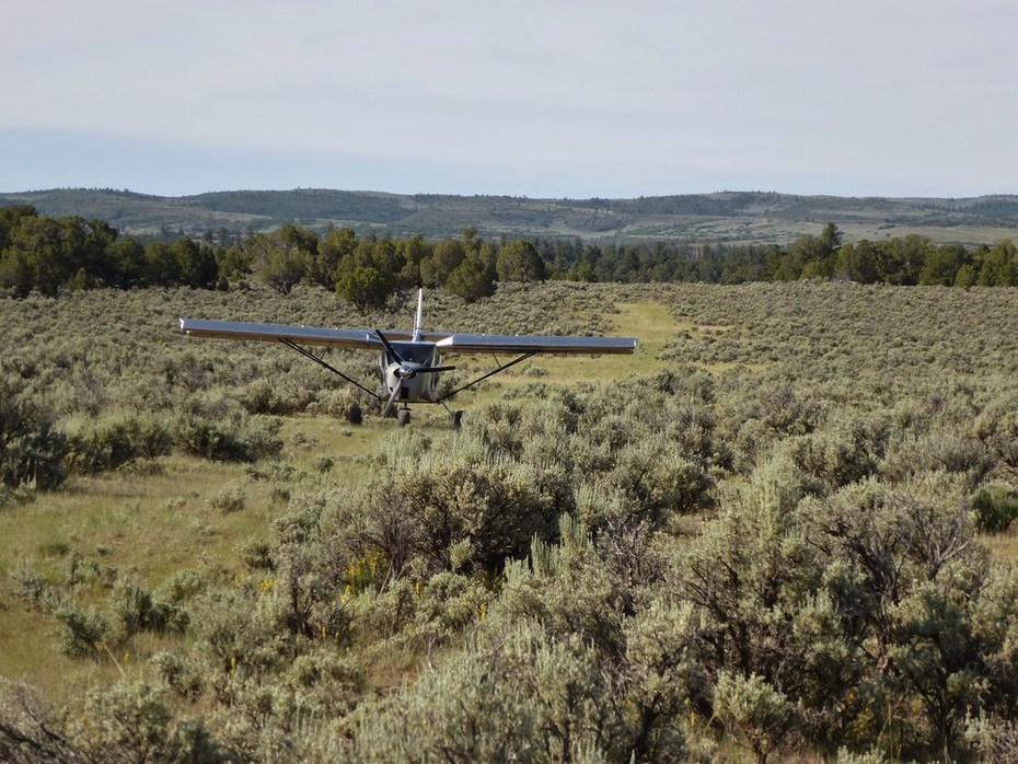 Zenith STOL: Doesn't need much runway
