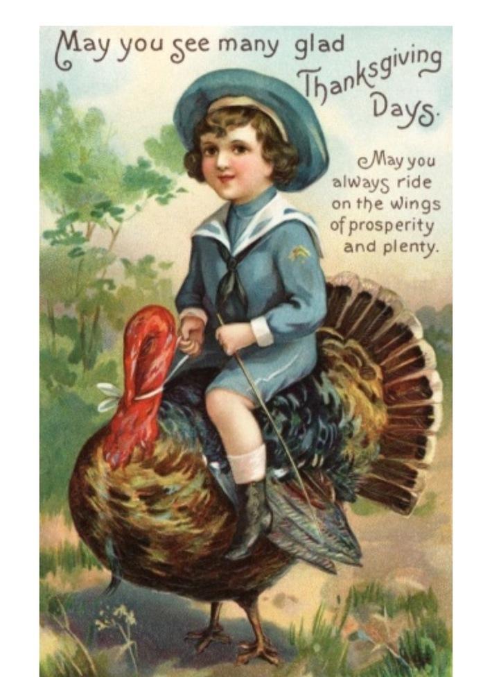 Flying a turkey
