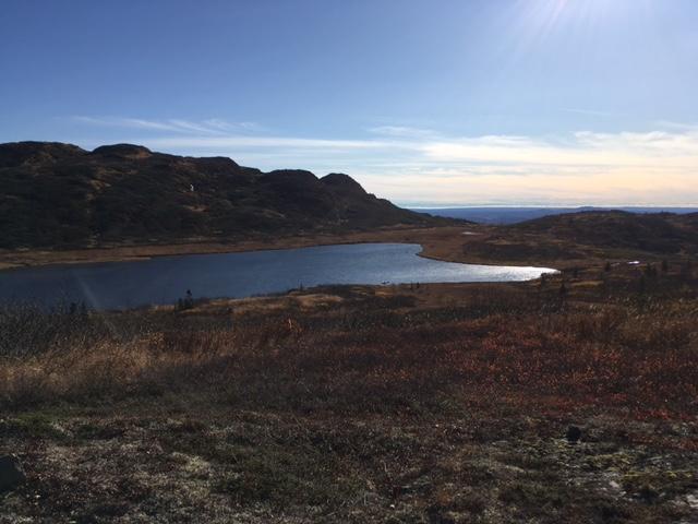 Mountain Lake Property