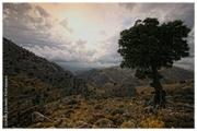 Η Κρήτη με τήν Ματιά μου - The Crete Island through my eyes