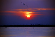 Promise ....Venice ..I will return....