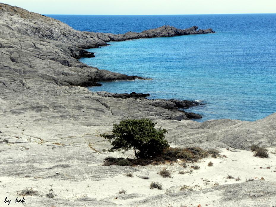 Αντίπαρος: Φανερωμένη, ζωή πάνω στα βράχια