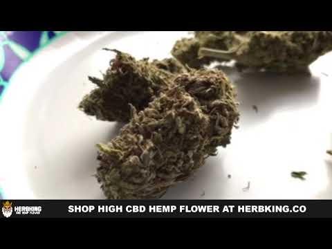 cbd hemp king