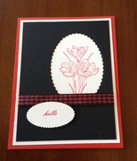 Gingham colored ribbon