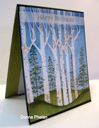 Birch Tree Birthday