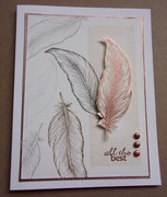 Masculine Feathers