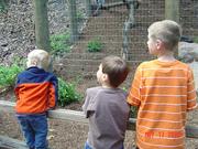 John Ball Zoo 016