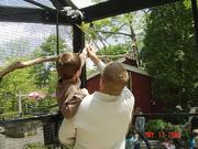 John Ball Zoo 024