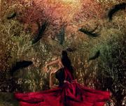 夢:私我的神話〈Private Myths: Dreams & Dreaming〉31