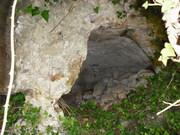 cava d'ispica 3
