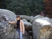 до камената реката