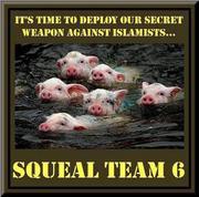 Squeal Team 6