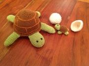 Familie schildkröte