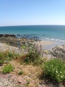 Port Wrinkle Cornwall