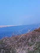 Dorset Coast Line