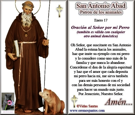 SAN ANTONIO ABAD 1