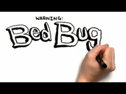bed bugs bites