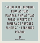 be04ca58034f727496ab0b0a63edf85b--portuguese-quotes-shadow-of