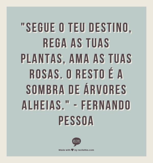 be04ca58034f727496ab0b0a63edf85b--portuguese-quotes-shadow-of