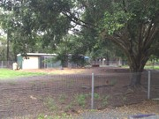 Marshall Rd Primary School Permaculture