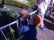 wyatt kissing carter