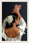 el color del baile flamenco - Carmen de Torres
