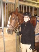 Horseys <3