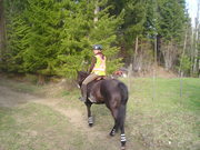 Trail ride April