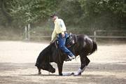 Randy Byers Horsemanship