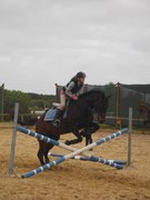 My horse...