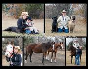 down on the farm photo shoot montage