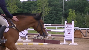 Equin Expo