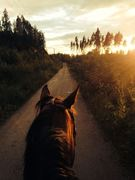A beautiful sunset hack in the summer