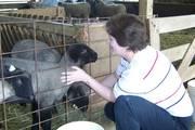 Lori & lambs